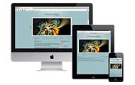 Чутливий веб-дизайн: що це таке і для чого він потрібен