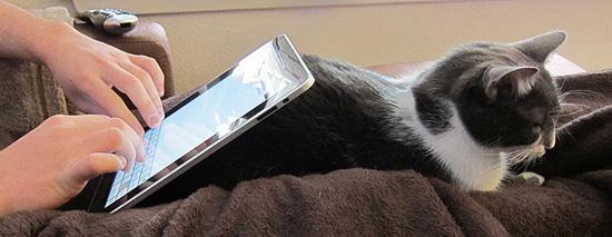 Що таке мобільна комерція?
